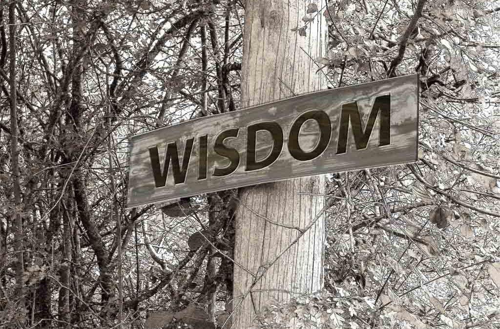 Wijsheid in besluitvorming is belangrijker dan kennis en planning